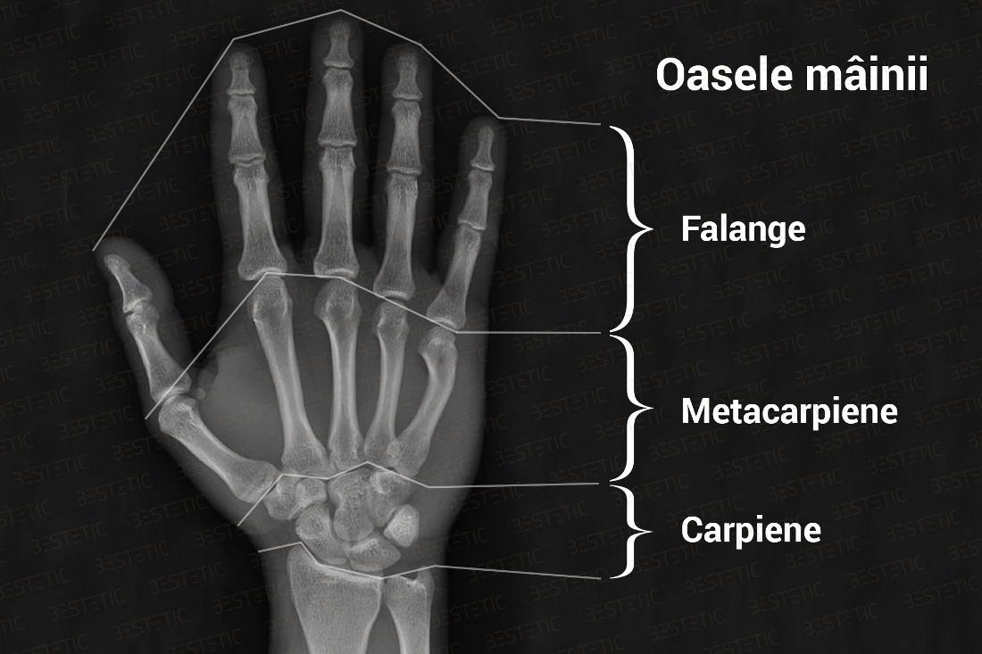 articulațiile rănite din ciclism
