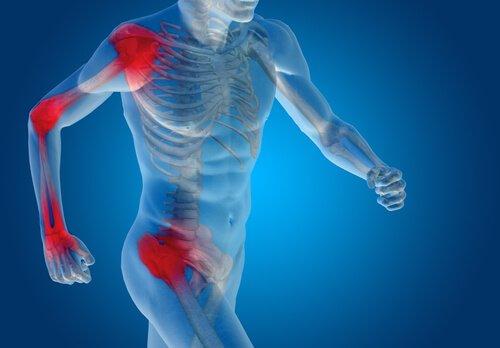 pentru restaurarea ligamentelor și articulațiilor