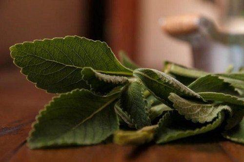 Vitamine pentru oase si articulatii - cum sa ai grija de oasele si articulatiile tale