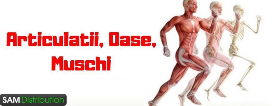 capsule pentru durere în articulații și mușchi ulei de lavandă pentru dureri articulare