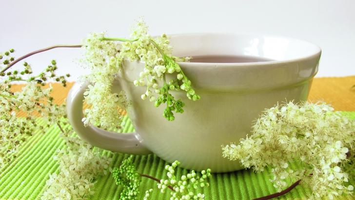 Reduceti durerile articulare cu plante!