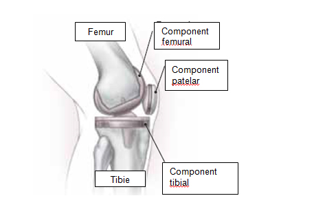 ciment până la articulația genunchiului)