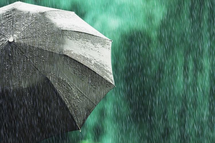 dureri articulare pe vreme umedă