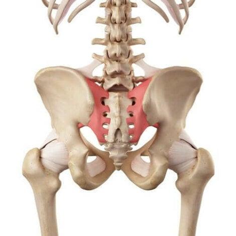 leziuni articulare sacroiliace