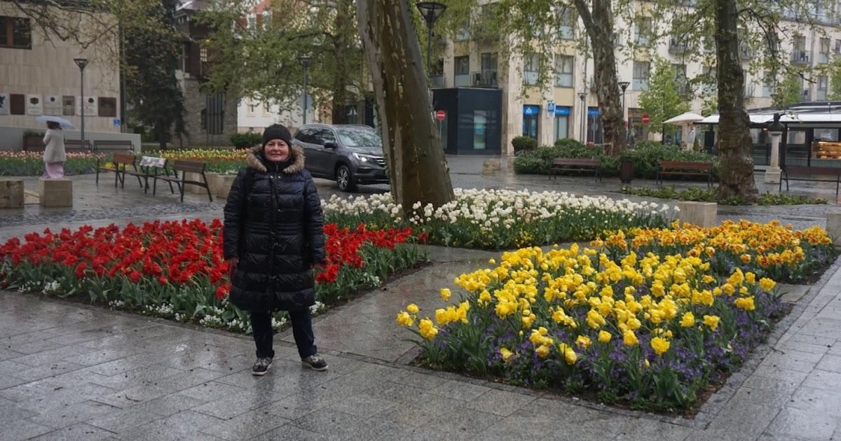 tratamentul articulațiilor de primăvară caldă)