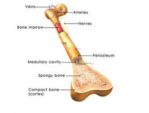 tratament articular după fracturi vindeca rapid durerile de genunchi