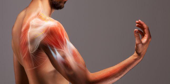 slăbiciune severă a durerii în mușchi și articulații