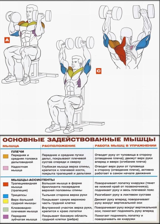 modul de a determina inflamația articulației umărului