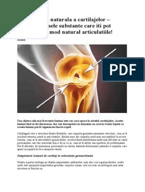 Grefa de cartilaj prin OATS - Shoulder & Knee Surgery