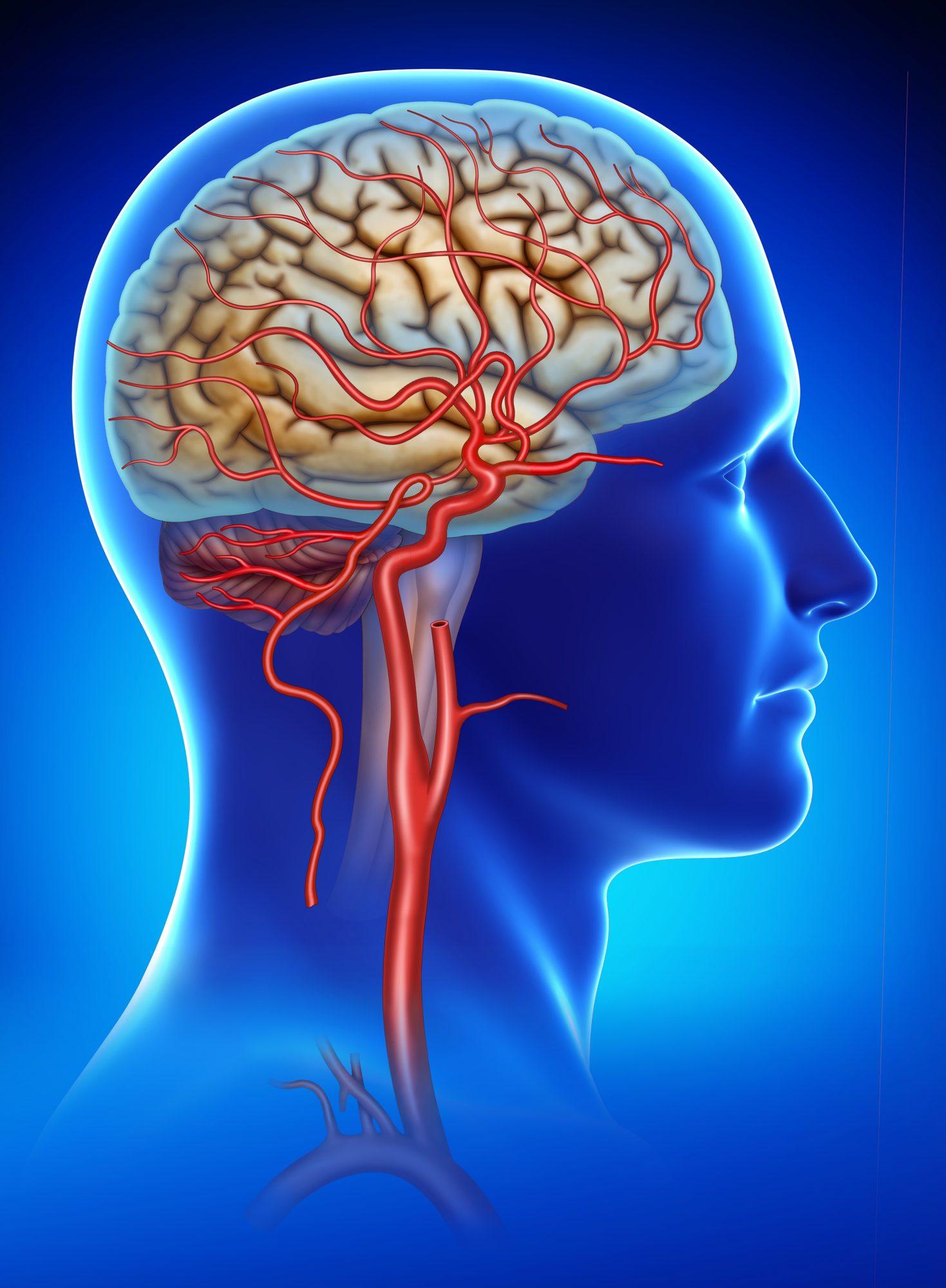 spasme ale articulațiilor tratamentului creierului