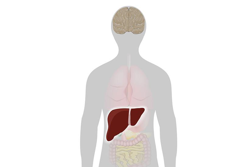 Durerile musculare in hepatita C, Dureri articulare cauzate de hepatita C