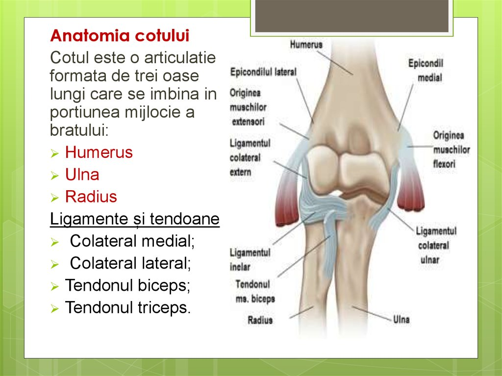 inflamația cotului brațului