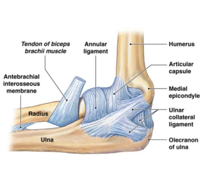 inflamația țesuturilor articulației cotului)