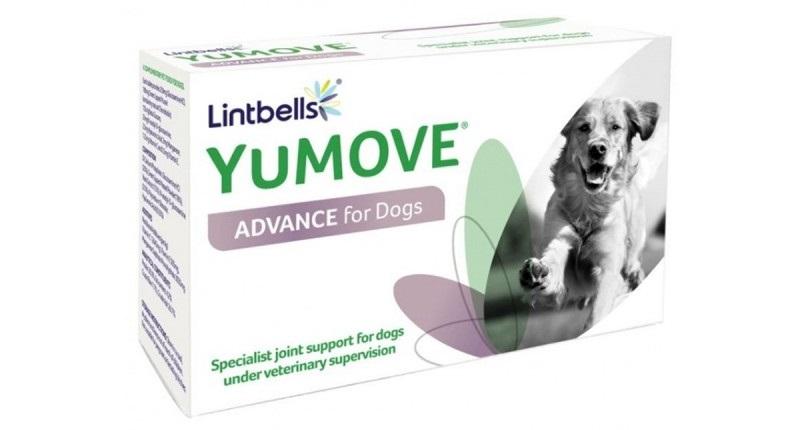 artroza în tratamentul câinilor ciobani)