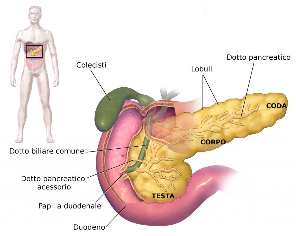 inflamația articulației pancreasului)