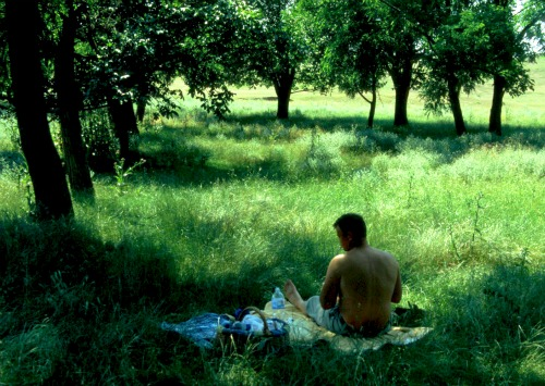 boala articulațiilor de iarbă)