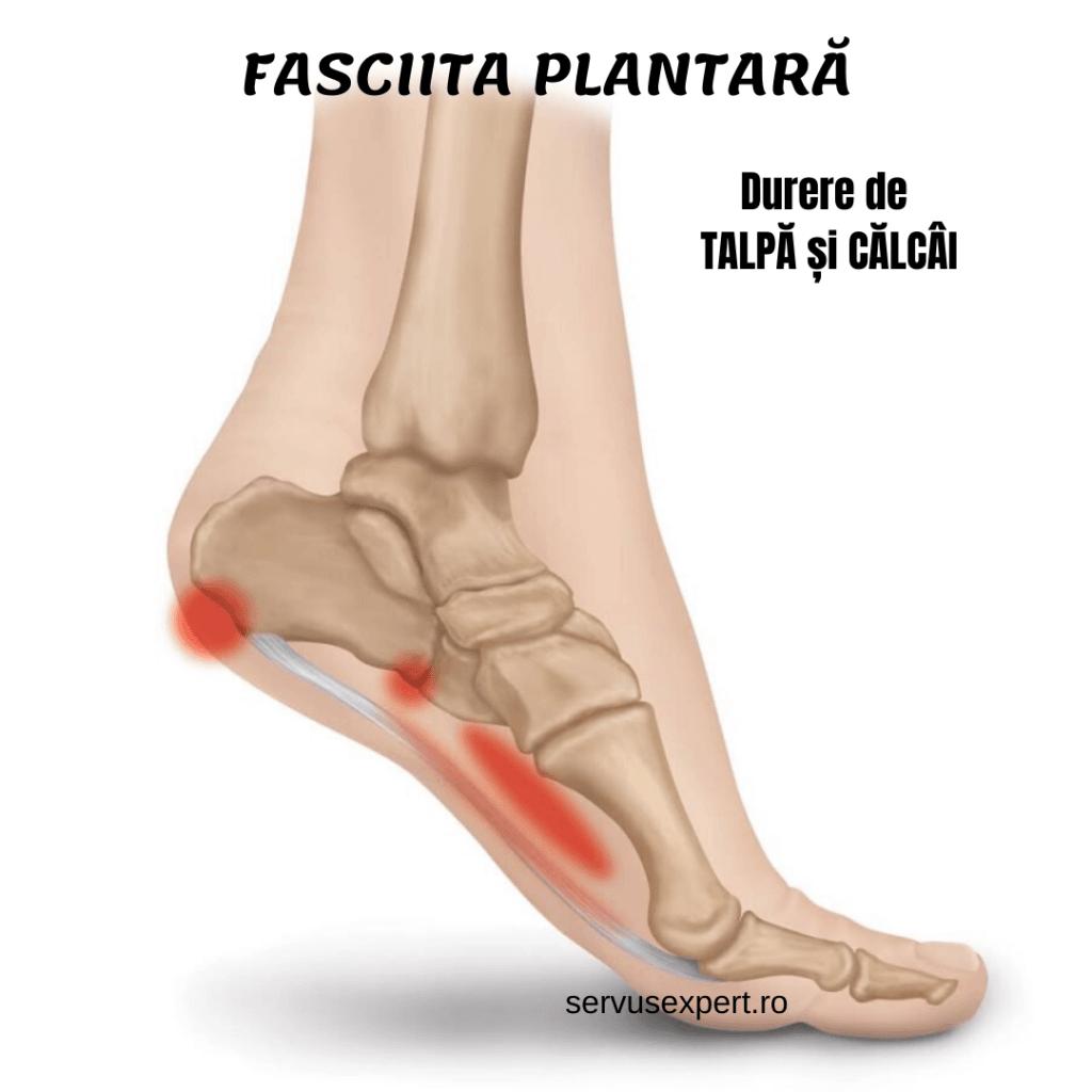 durere în articulația piciorului piciorului stâng