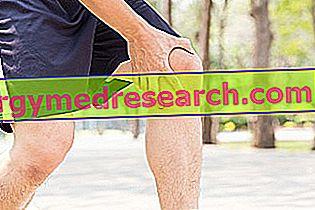 Inflamația tendoanelor genunchiului (periartrita sacului