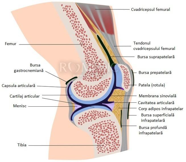 articulație dureroasă a genunchiului piciorului drept în stânga)
