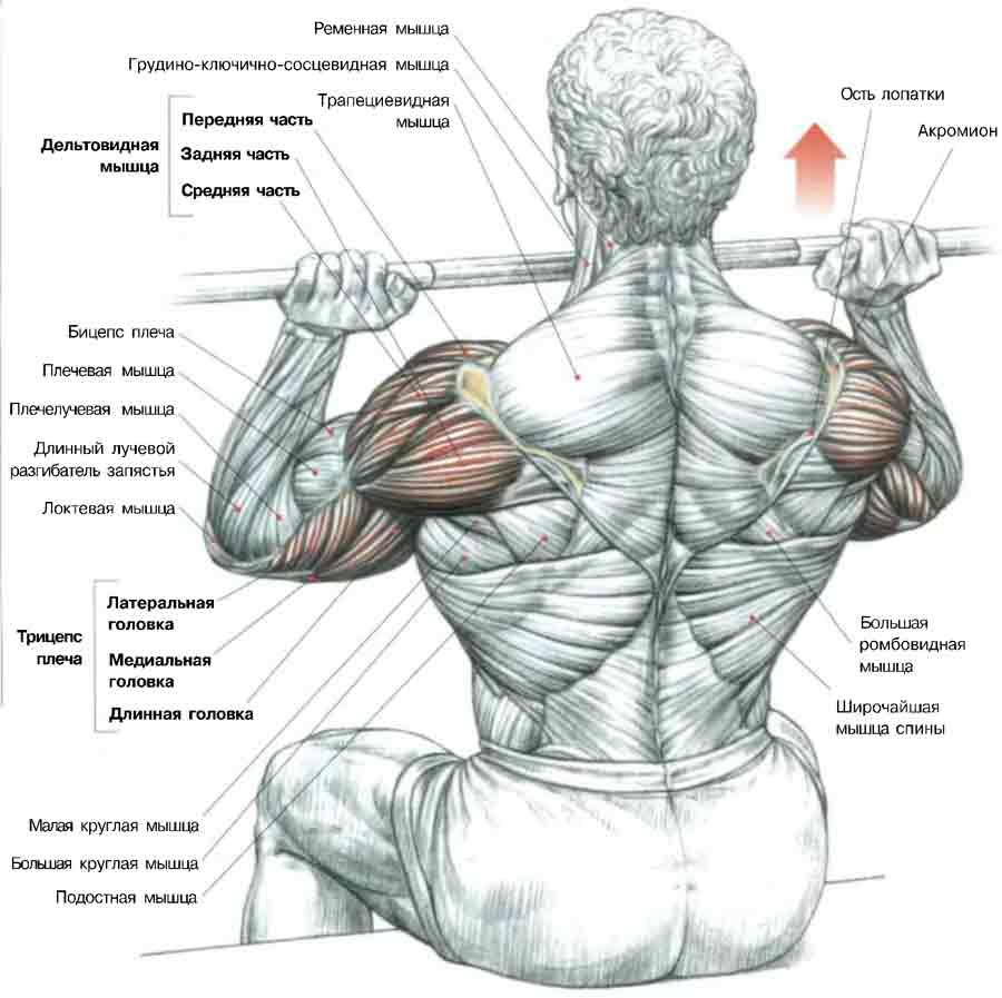 masaj pentru durere în articulația cotului