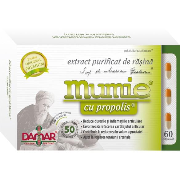 mumie din dureri articulare)