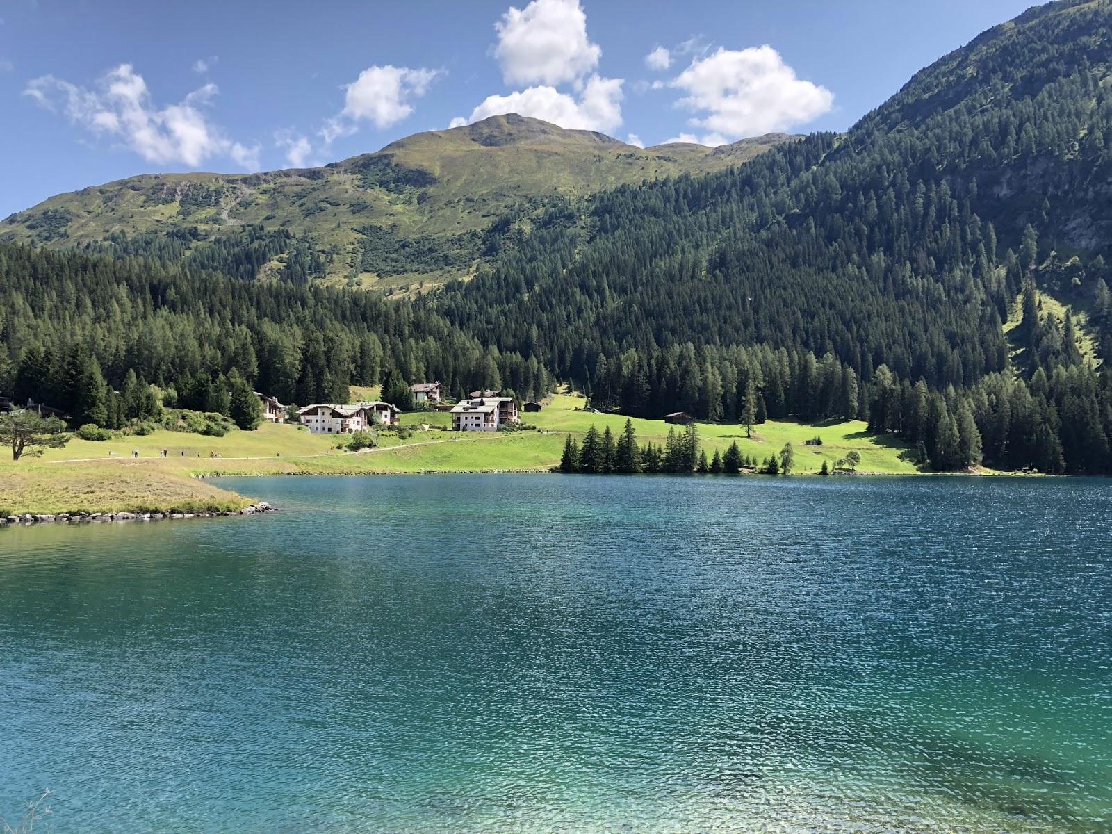 balsamul Elveția