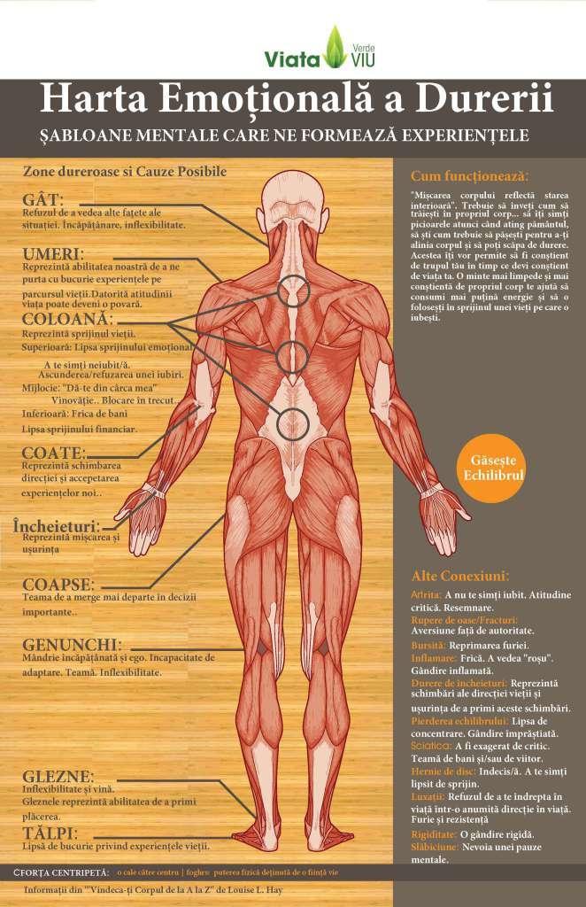 Ce efecte au emoțiile negative asupra sănătății