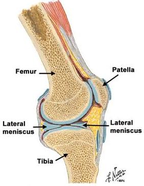 blocaj în articulația genunchiului