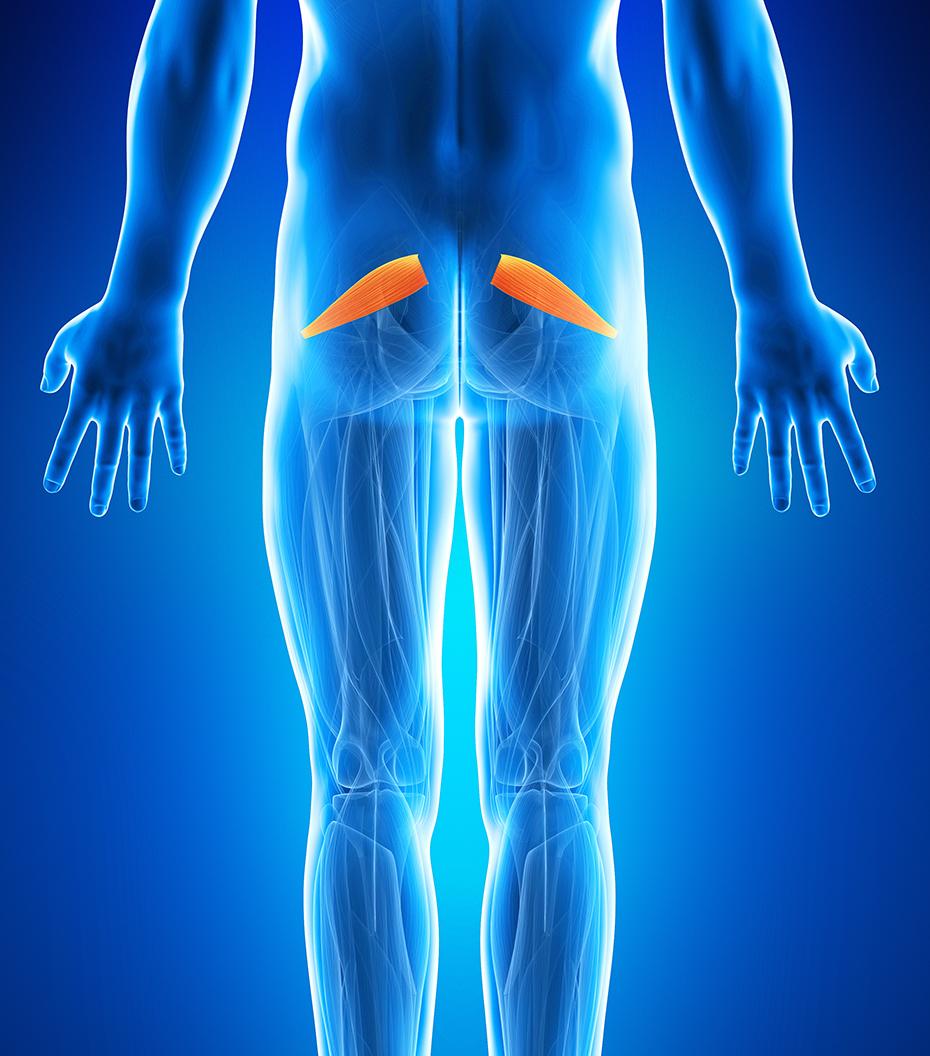 Durere în articulația stângă. Diagnosticarea