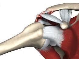 artroza articulației claviculare)