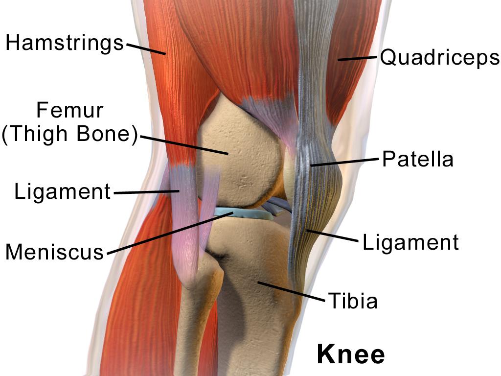 ceea ce determină rănirea articulației genunchiului)