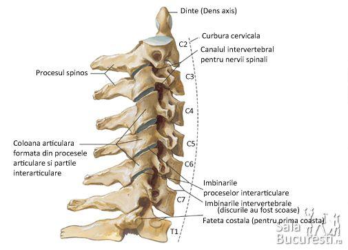 chirurgia durerii articulare