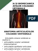 coloană vertebrală și articulații
