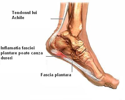durerea articulațiilor pe vreme provoacă tratament cauzele durerii articulare la nivelul bratelor