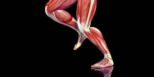 deteriorarea țesuturilor moi la tendoane și articulații)