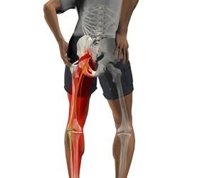 dureri de șezut în articulația șoldului