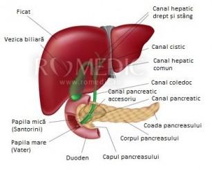 dureri hepatice și articulații unguent eficient pentru articulații