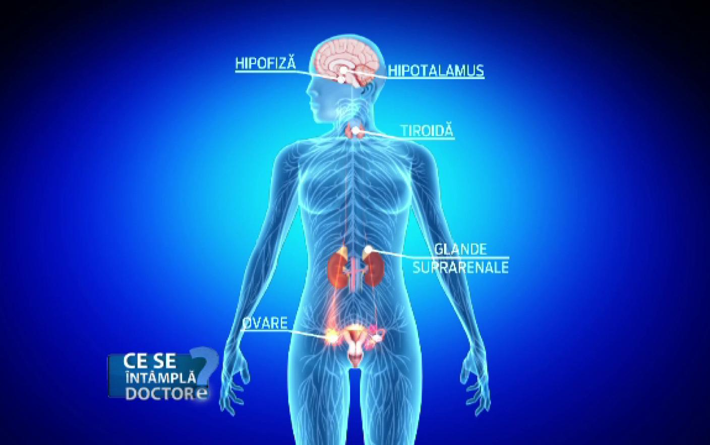 articulațiile sub genunchi doare