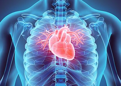 durere în toate articulațiile cu insuficiență cardiacă cronică