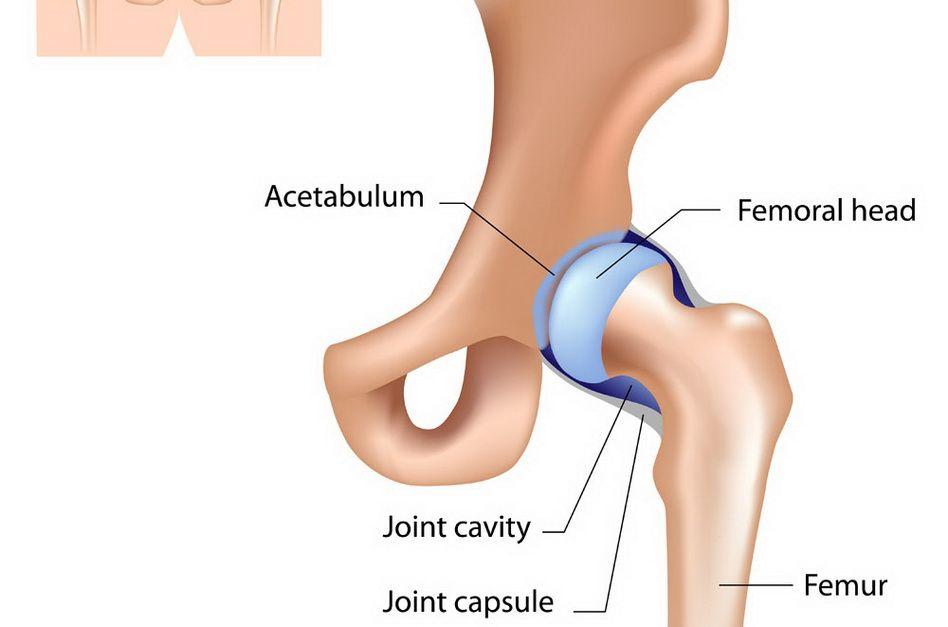 după întindere, articulația șoldului doare)