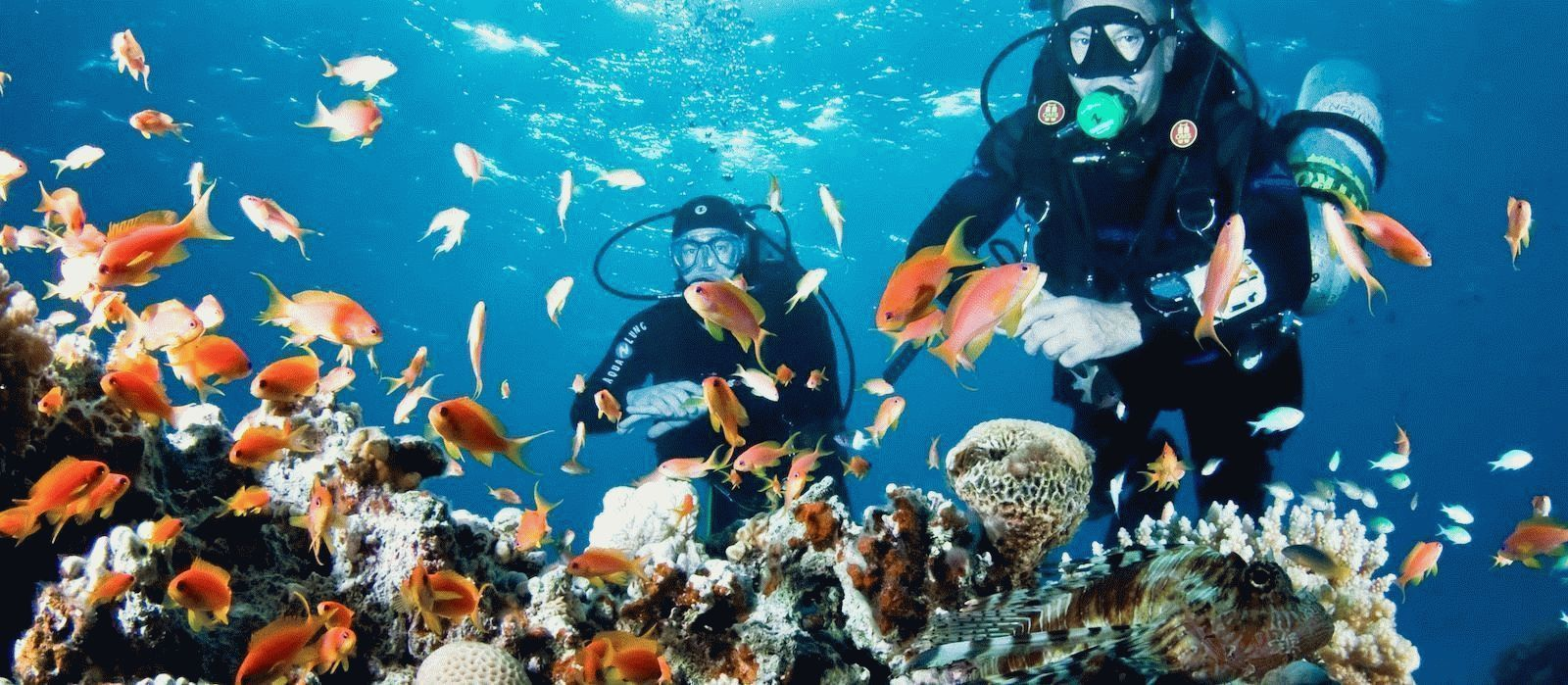 pregătirile comune ale clubului de corali