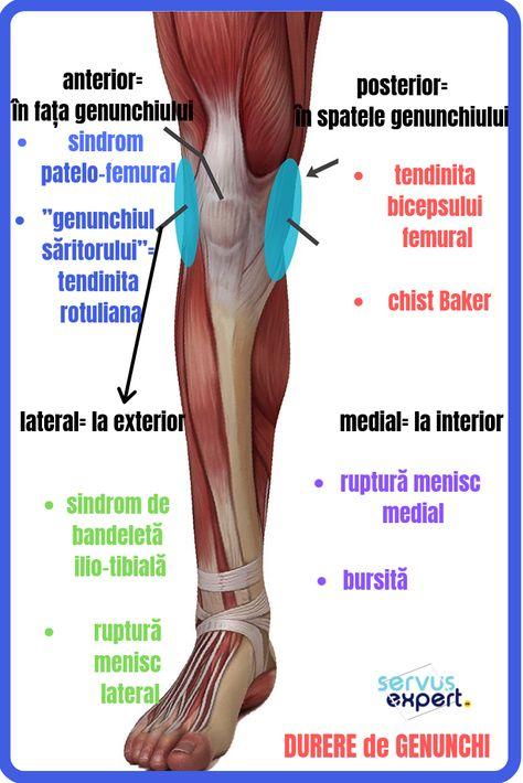 tratamentul nevralgiei genunchiului