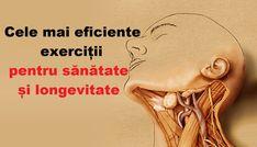 un set de exerciții pentru durerea articulației șoldului)