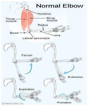 articulația cotului drept doare