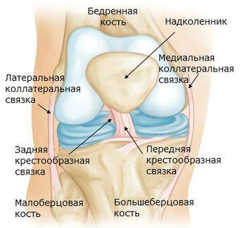 deteriorarea ligamentului cruciat al genunchiului 3 grade