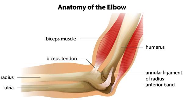luxația tratamentului de ruptură a ligamentului articulației cotului)